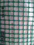 广州穗安PE塑料网 厂家加工批发