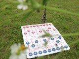 爱奉者优质ABS塑料折叠盲人中国象棋