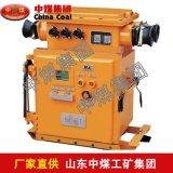 DBB-200电镀表箱 DBB-200电镀表箱价格