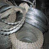【護欄網廠】直銷500刺繩護欄網 刀片刺繩 鍍鋅刀片刺繩