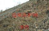 宁波山体拦截钢丝绳边坡防护网| 包塑植草铁丝网厂家