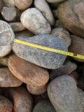 河北8-16毫米天然鹅卵石滤料厂家  鹅卵石滤料批发