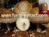 上海厂家供应优质香菇提取物(香菇多糖)