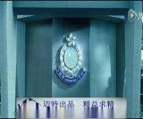 迈特金属网隔段案例之香港警局 精品装饰网 金属网幕墙 垂帘网 电梯装饰网 钢化玻璃装饰网 金属网背景墙 高大上档次