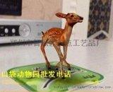 早教益智玩具口袋动物园深圳江西云南贵州海南