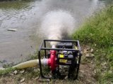 翰丝HS40DP灌溉泵汽油/柴油电启动
