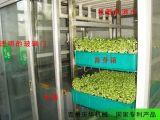 潍坊青州庆华全自动芽苗机、无公害活体芽苗菜机械