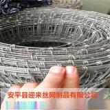 草原网牛栏网 养殖铁丝网 养殖围栏网
