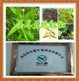 富正源生物墨旱蓮提取物 標準化植物提取物 10: 1