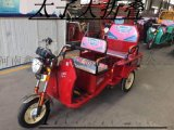 電動三輪車(大折疊)——洛嘉廠家直銷