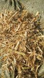 豆秸草粉的营养 牛羊喂豆秸草粉的好处