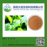 厂家直销     绿茶提取物-茶多酚