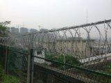钢板网栅栏+0.5m刺丝滚笼