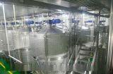 石榴汁饮料生产设备(KEXIN)石榴酒酿造设备 郑州石榴酒生产线