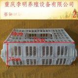 鸡笼 养殖设备 鸡用运输笼 成鸡周转笼 塑料鸡笼 养殖运输笼
