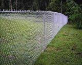 生产销售 镀锌勾花网 养猪铁丝网 筛网铁丝网 鸡笼铁丝网