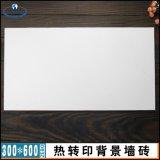 热转印瓷砖 30*60cm电视墙瓷砖定制 壁画定制 涂层瓷片厂家直销