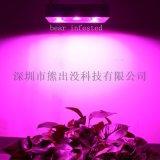 厂家定制 LED植物生长灯 多肉花卉红蓝灯 全光谱植物补光灯