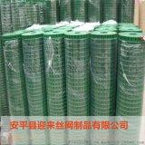 镀锌电焊网,不锈钢电焊网,包塑电焊网
