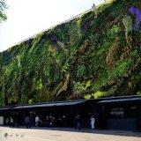 遵义仿真园林里面设计有植物屏壁和壁挂花盆