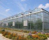 绿帆农业专业承建全国高档智能连栋温室、玻璃连栋温室设计建造