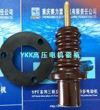 高壓電機接線柱瓷瓶套(YRKK/JR/YR)