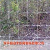 镀锌牛栏网,养殖铁丝牛栏网,养殖围栏网
