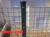 圈地围网荷兰网 草坪围栏网 散养鸡鸭围网 厂家直销