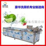 草莓清洗机 蘑菇清洗机 气泡清洗机 臭氧去除农药去杂清洗机