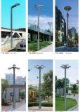 庭院灯杆 利祥品质灯杆