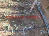 周口邯城县大棚滴灌 塑料管材,PVC管