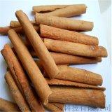 肉桂提取物Cinnamon Bark Extract20%肉桂多酚