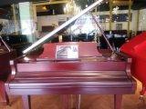 選星海牌鋼琴來青島正一坊琴行