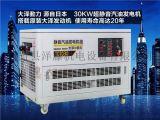 30KW四缸汽油发电机, 水冷发电机