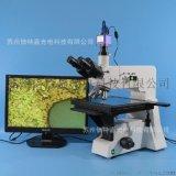 正置三目金相显微镜厂家 XJL-101A-550HS型 金属结构分析科研