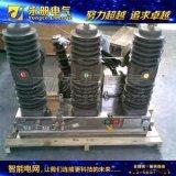 ZW32C1-12型高壓雙電源自動轉換裝置
