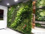 拉萨仿真植物墙 西宁墙面绿化银川植物墙生产西安仿真绿植墙 贵阳仿真绿篱墙生产