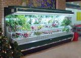供应 安德利 鲜花柜  广东花店鲜花展示柜  鲜花保鲜柜
