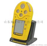 BW多种气体检测仪 M5便携式多种气体检测仪