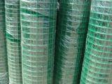 綠色養雞網@鹽城綠色養雞網@綠色養雞網生產廠家