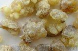 乳香提取物Boswellia Extract