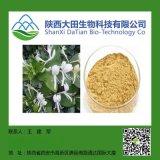 金银花绿原酸98%HoneySuchleFlowers E