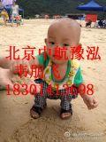 北京海砂怎么卖,海沙价格