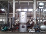 YGL/YLL燃煤立式有机热载体炉 20万大卡立式燃煤导热油炉 生物质自动链条油炉
