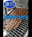 鸡蛋大型蒸煮机全自动无破损