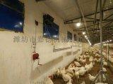 养鸡料线水线