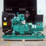 厂家提供保养康明斯48KW柴油发电机组