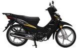 供应新大洲本田SDH100-43威武摩托车