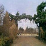 河北   秦皇岛主题乐园入口大门造型仿山石树木树叶景观设计装饰