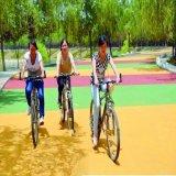 自行车道 彩色防滑 健身道 绿道